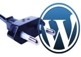 Make Money With WordPress Plugins